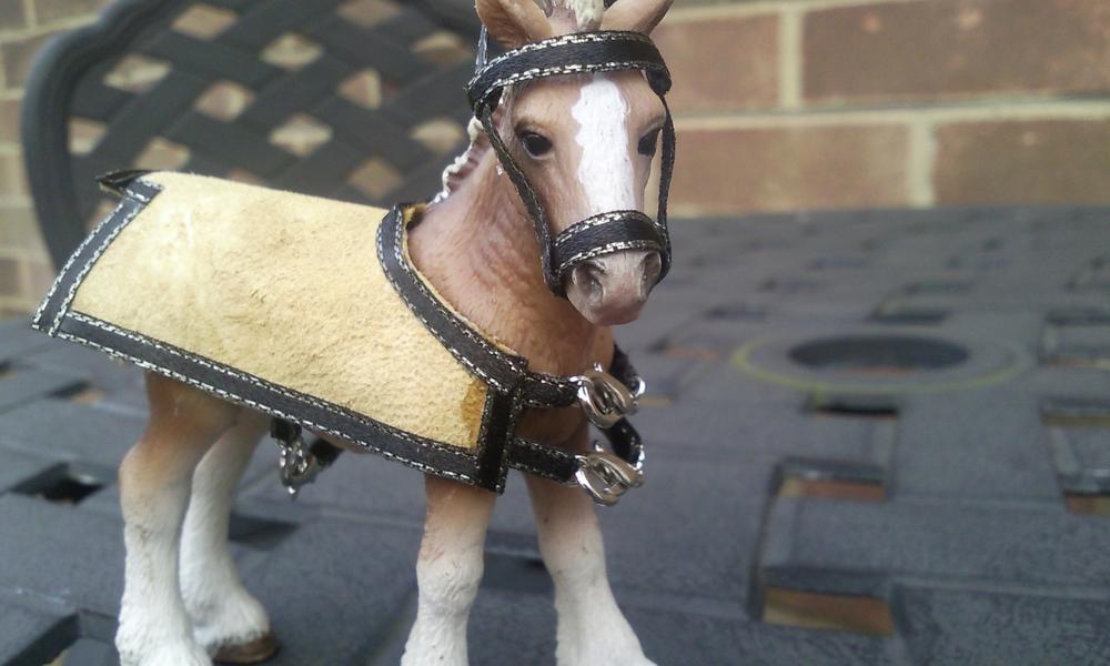 This is a rug for a Schleich sized model horse- its made of leather and i sewed the ribbon round the outside.